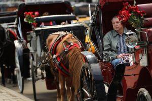 Tres menores mueren en choque de carruaje Amish con camión de basura