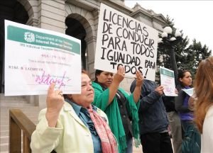 Más de 600 mil licencias otorgadas a indocumentados en un año