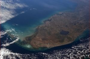 Gobernador de Florida declara estado de emergencia por alga tóxica