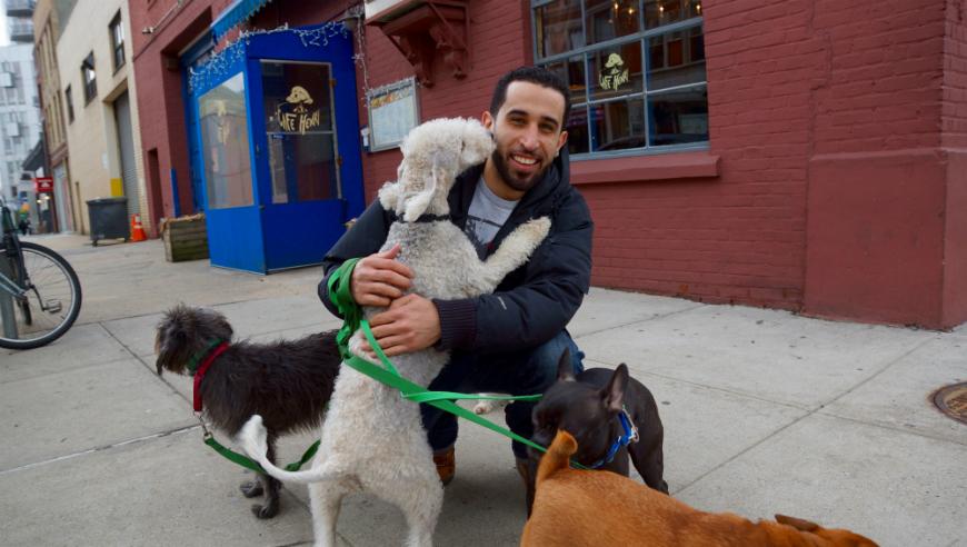 ¿Sabes cuáles son los nombres de perros más populares en NYC?