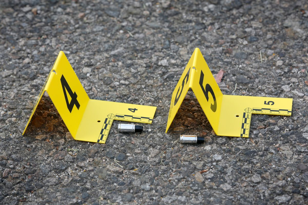 La mayoría de los tiroteos fueron reportados durante convivencias en los parques