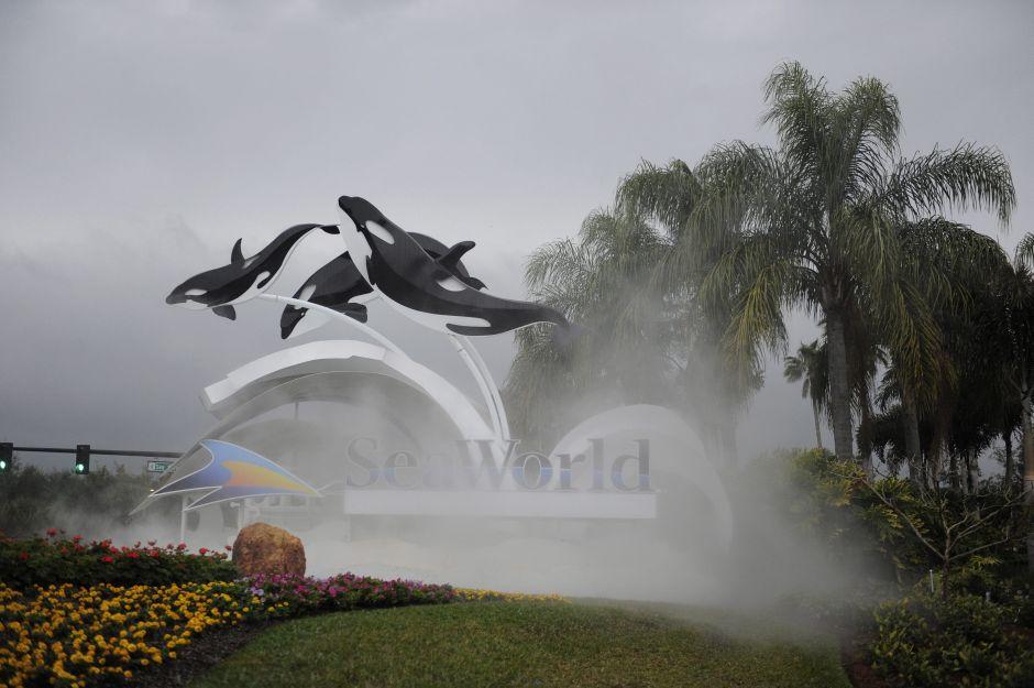 SeaWorld anuncia el fin de su programa de espectáculos con orcas