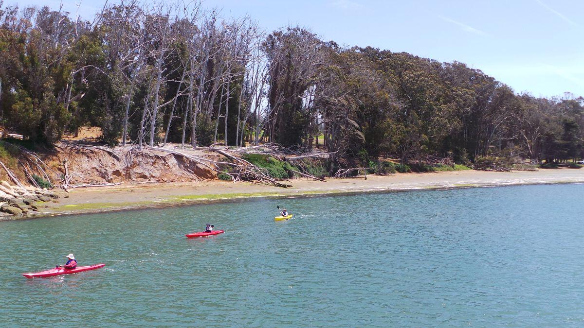 Se ahogó ingeniero de Google Nueva York al voltearse su kayak en Maine