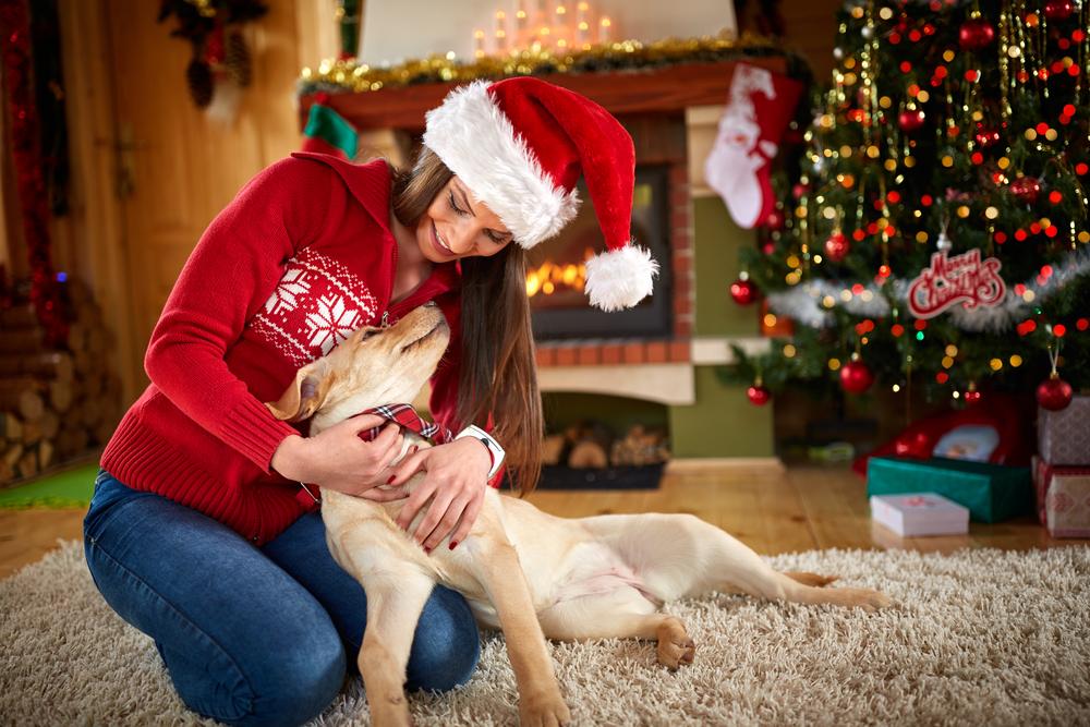 Proteger y amar a nuestros animales debe formar parte del significado de la Navidad.