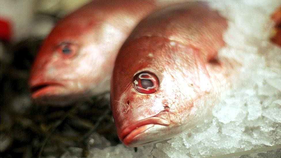Comer pescado es menos saludable con el aumento de las temperaturas en la Tierra