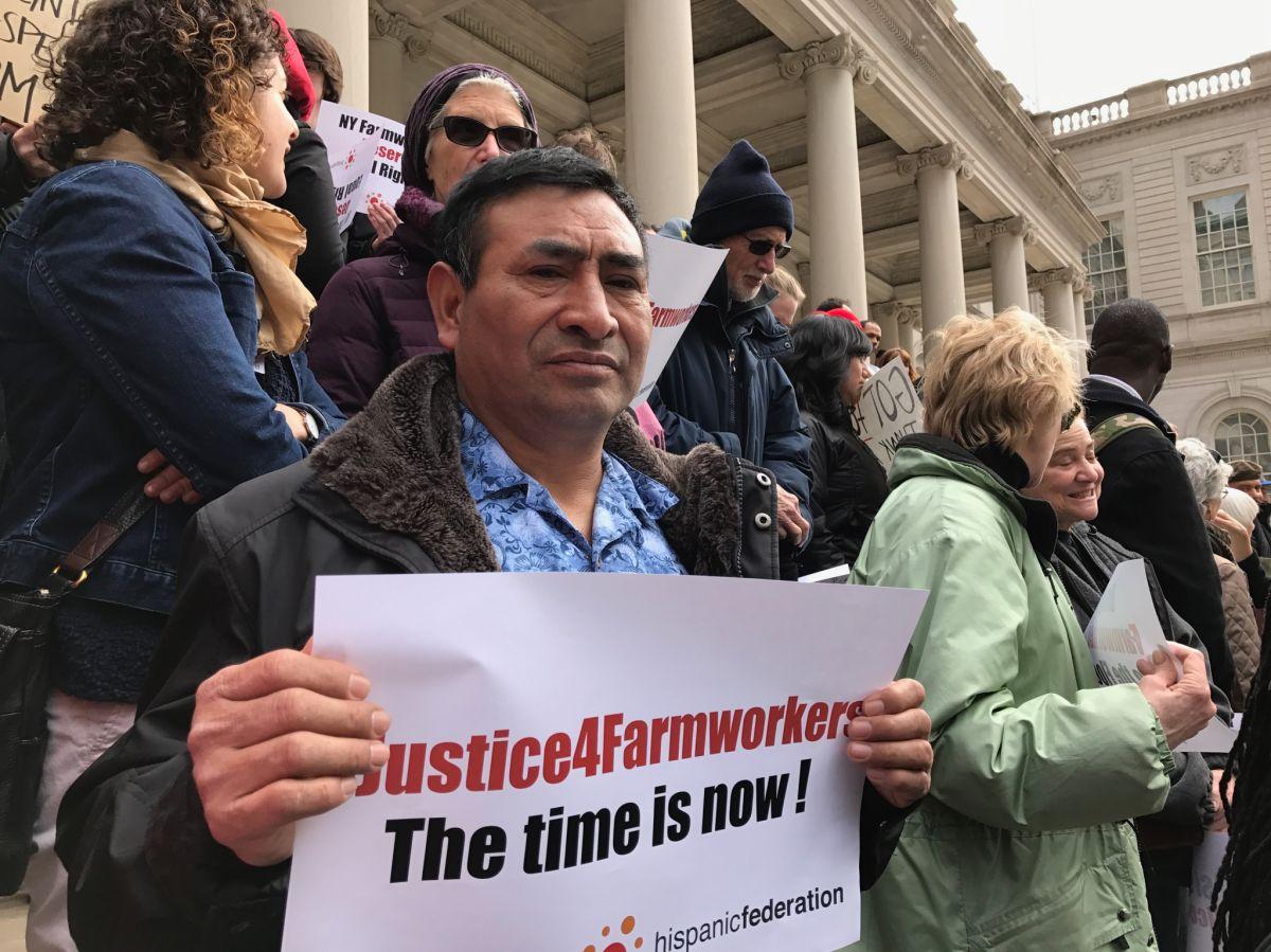Exigen que finalmente Albany apruebe ley justa para trabajadores agrícolas