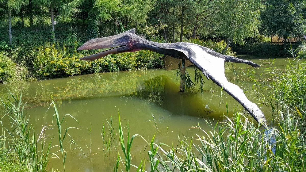 Encuentran restos de predador volador que cazaba dinosaurios