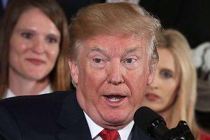 Donald Trump quiere regresar a los años en que este país elegía a sus inmigrantes por raza