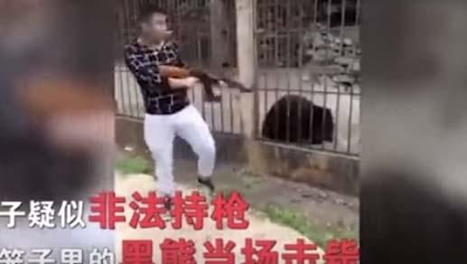 Turista fusila con AK-47 a un oso tibetano en zoológico
