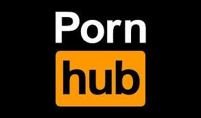 El contenido porno más visto en 2017
