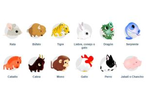 Horóscopo Chino: Recomendaciones para los doce signos del zodiaco