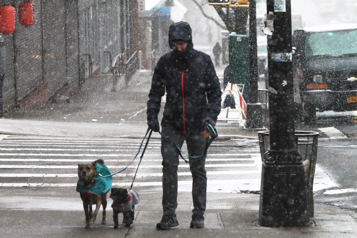 Podría ser la mayor nevada en primavera en la historia de NYC