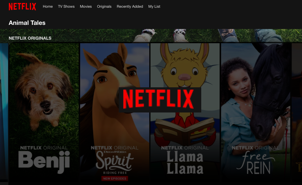 5 películas y series de animales en Netflix
