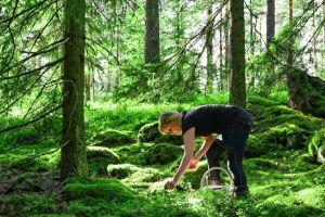 Dieta nórdica: El régimen alimenticio que recomienda la OMS para mejorar tu salud