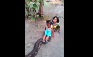"""Niñas en Filipinas """"cabalgan"""" sobre anaconda como si fuera una mascota"""