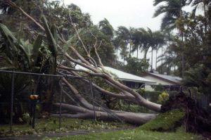 Esta es la razón por la que los huracanes y ciclones son (y serán) más devastadores