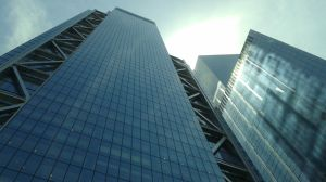 Edificios de vidrio se convierten en guillotinas para las aves