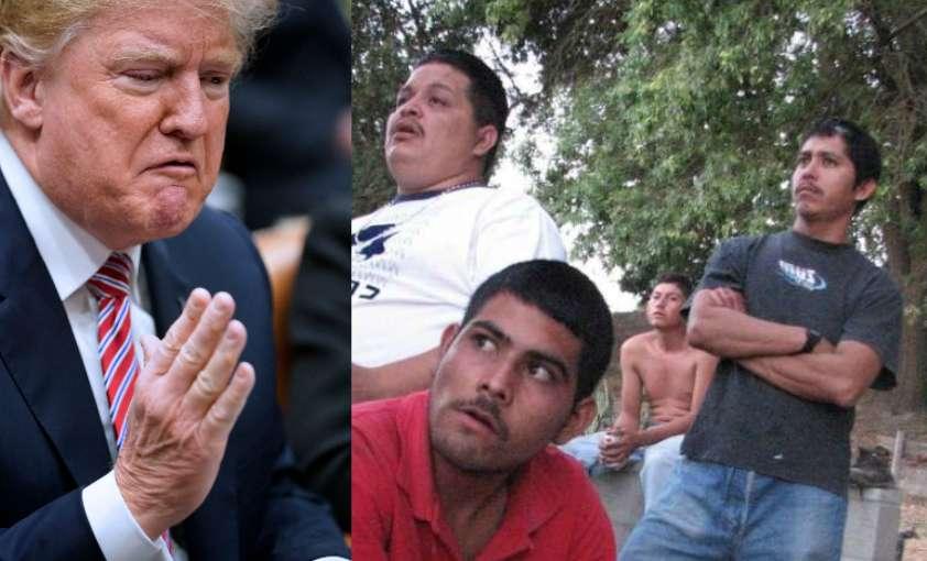 El gobierno de Donald Trump se ha caracterizado por una dura retórica antiinmigrante