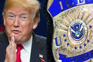 """ICE: Trump nomina nueva """"mano derecha"""" en su lucha contra indocumentados"""