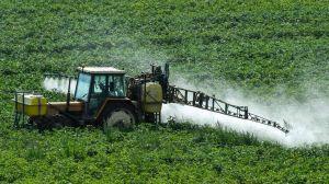 El glifosato: la sustancia en los herbicidas más usados que puede causar cáncer