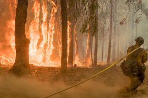 El valle de Yosemite reabre al público, entre laderas en llamas