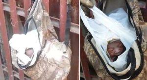 Video: El desagarrador momento en que encuentran a un recién nacido abandonado dentro de una mochila