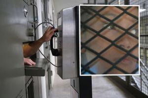 Seis prisioneros mueren con COVID en cárceles del estado de Nueva York
