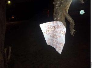 Matan a cocodrilo, lo cuelgan en árbol y dejan mensaje de advertencia en Jalisco