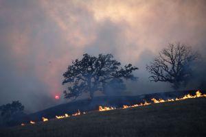 Ascienden a 31 las muertes por los incendios que continúan en California