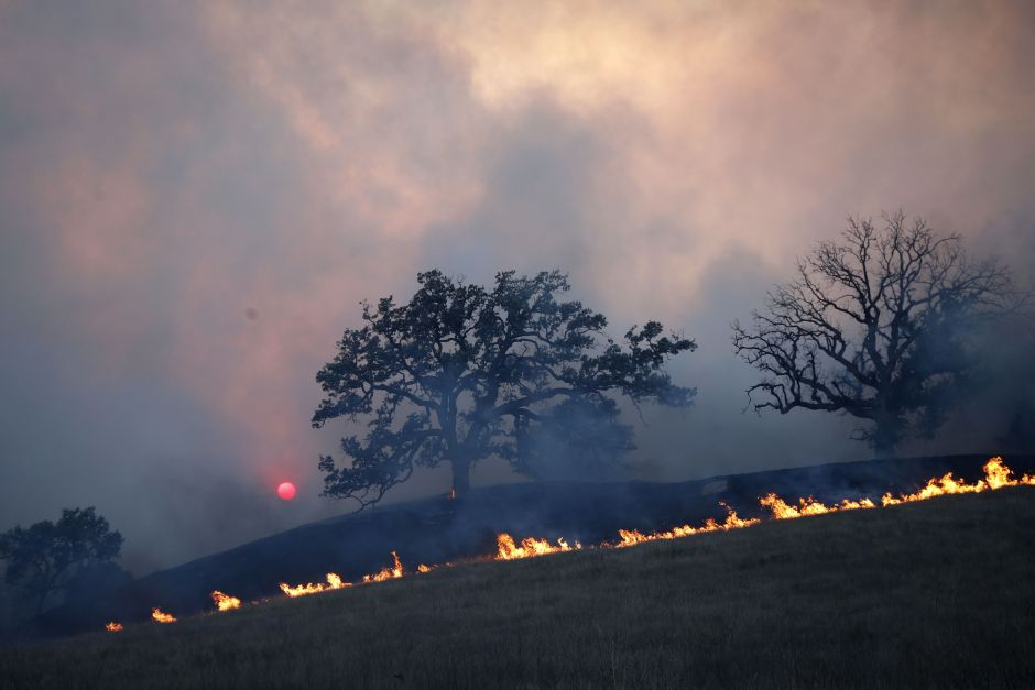 Trump visitará California para reunirse con víctimas de incendios