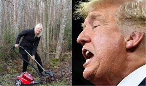 """Estallan las burlas contra Trump por su """"solución"""" para evitar los incendios forestales"""