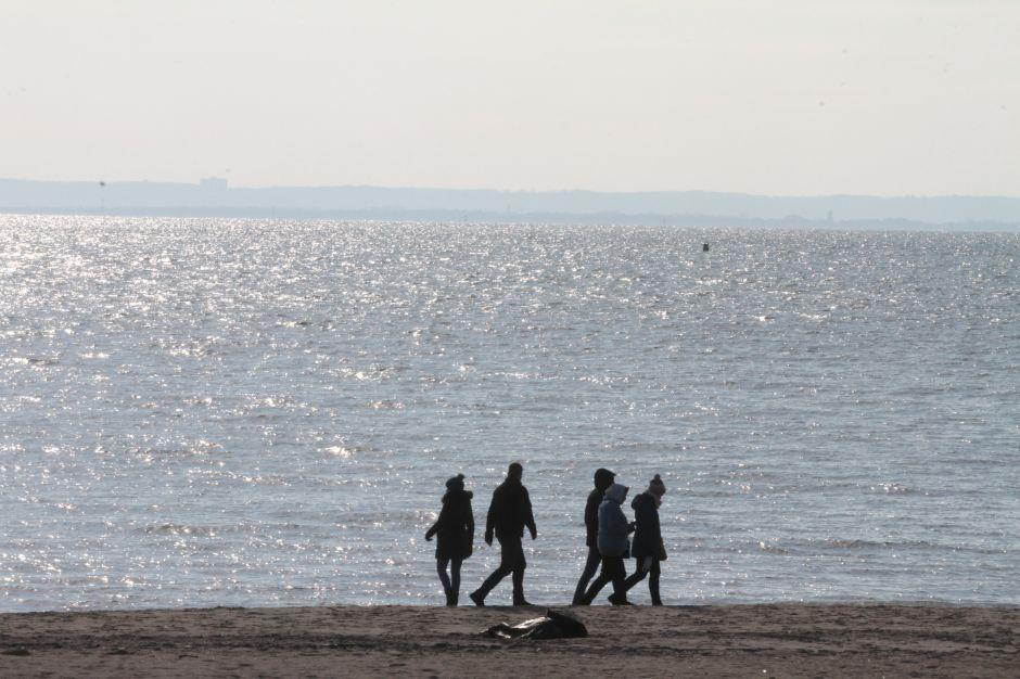 Más partes de un cuerpo humano son encontrados en Coney Island
