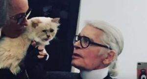 Choupette, la gata de Karl Lagerfeld que podría heredar su fortuna