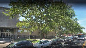 Encuentran feto bajo un árbol cerca de escuela secundaria en Brooklyn