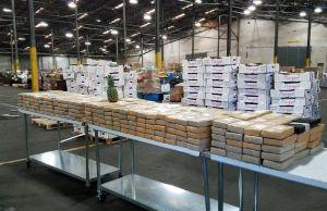 Cargamento de piñas resultó ser cocaína con un valor de $19 millones de dólares