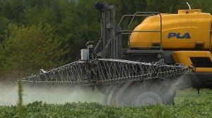 """Glifosato: un jurado determina que el herbicida fue un """"factor sustancial"""" en un caso de cáncer"""