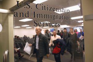 Soy inmigrante, ¿debo estar preocupado con el nuevo director de USCIS?