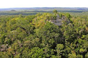 National Geographic mostrará las ruinas de guerra de los mayas descubiertas con lásers
