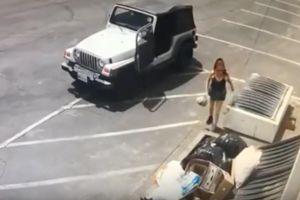 Arrestan a la mujer que tiró una bolsa llena de cachorros a la basura en Coachella