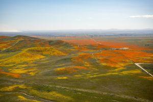 La NASA publicó fotos asombrosas de los super jardines de California
