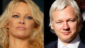 """Exmodelo de Playboy Pamela Anderson """"pone las manos en el fuego"""" por Julian Assange"""