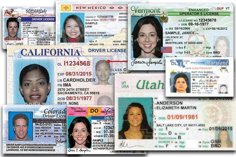 Nueva York aprueba licencias de conducir para indocumentados