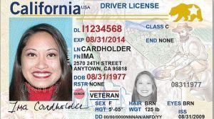 Representantes del DMV ofrecen información en aeropuertos sobre el REAL ID, ¿qué es lo que debes saber?
