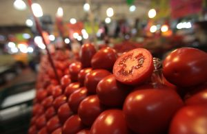 Duros tiempos para jornaleros agrícolas por impuesto de Estados Unidos a tomateros mexicanos