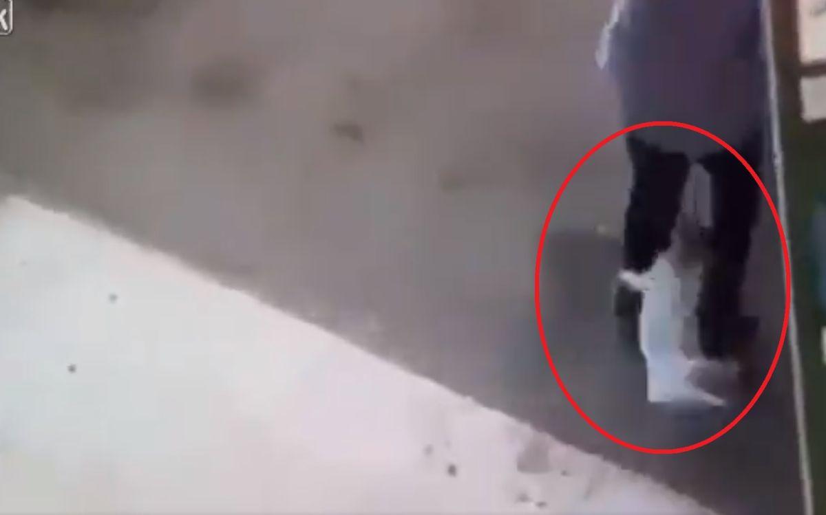 VIDEO: El terrible (y extraño) ataque de un gato a un hombre que afirman es alcalde de Culiacán