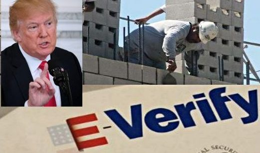 Gobierno Trump podría incluir E-Verify obligatorio dentro de su plan migratorio
