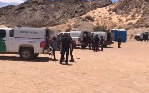 VIDEO: Patrulla Fronteriza detiene a 700 inmigrantes