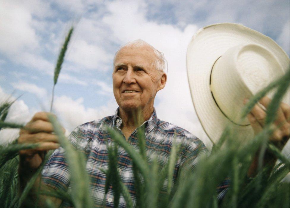 El hombre que salvó a millones de la hambruna y ganó el Nobel por su trabajo en México