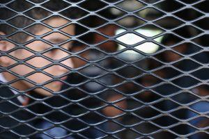 Bajó drásticamente el número de menores no acompañados en custodia de la Patrulla Fronteriza