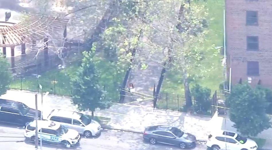 Niño de 7 años recibe impacto de bala en El Bronx